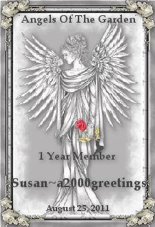 one year member