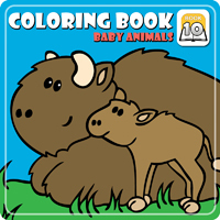 software coloring book