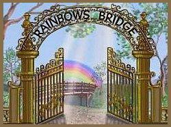 rainbow bridge gate